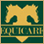 Website Design in Egypt :Equicare Products : Fine Equestrian Products