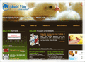 Website Development in Egypt :Multi Vita Animal Nutrition