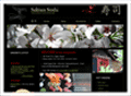 Website Development in Egypt :Sakura Sushi : Japanese Restaurant & Bar